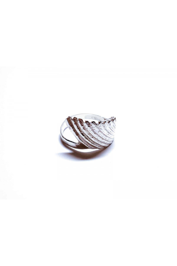 Prsten - mušle z Uvita