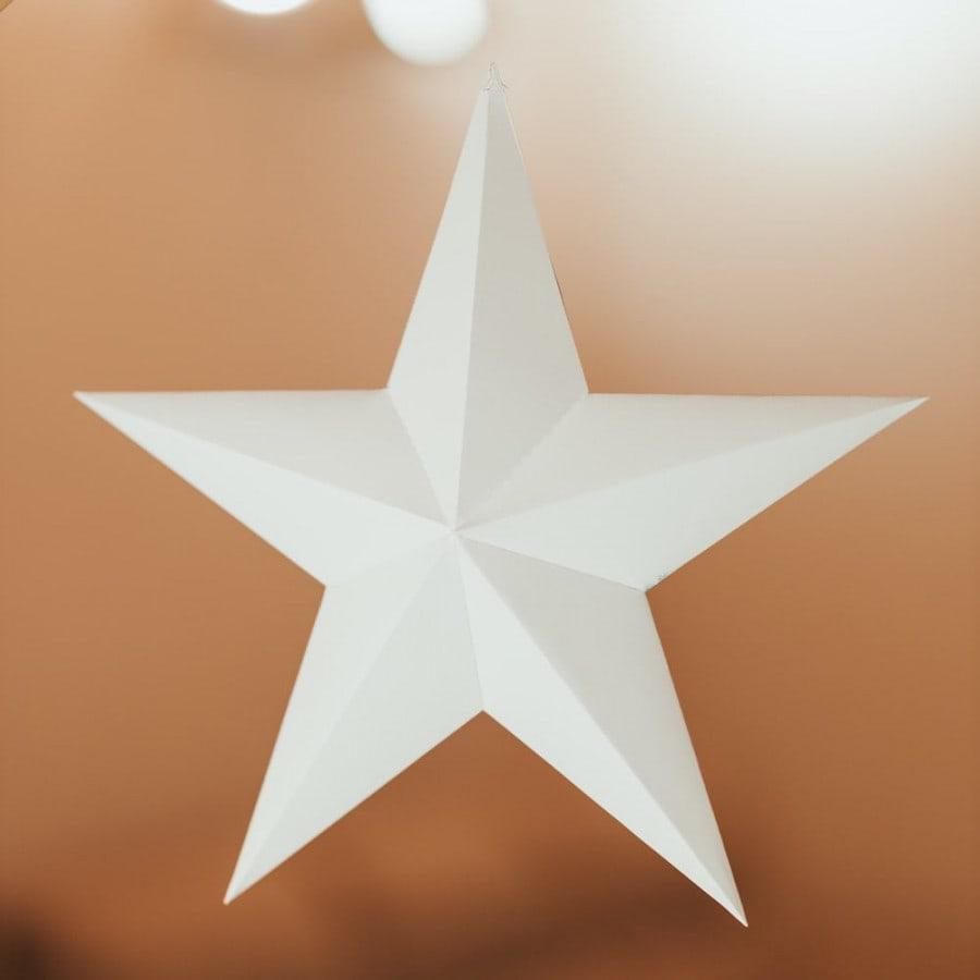 Vánoční hvězda – bílá