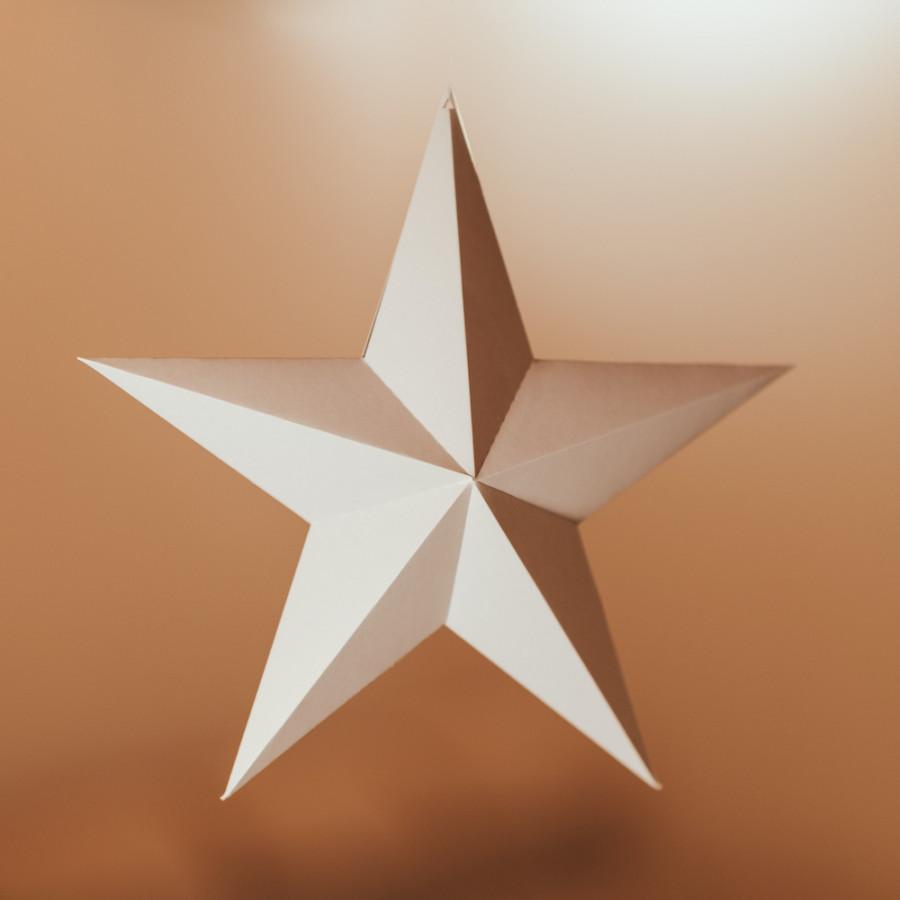 Vánoční hvězda – růžová